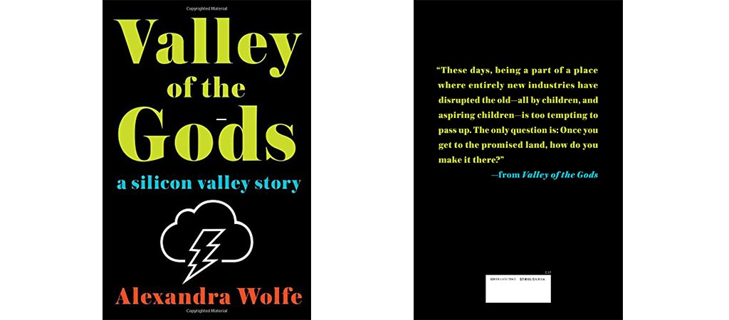 Valley Of The Gods: A Silicon Valley Story front and back cover