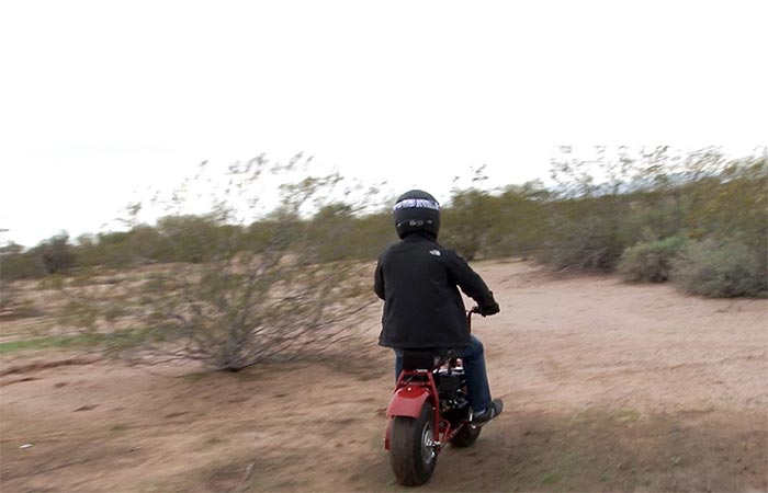 Back view of a man using the Coleman Powersports Mini Trail Bike