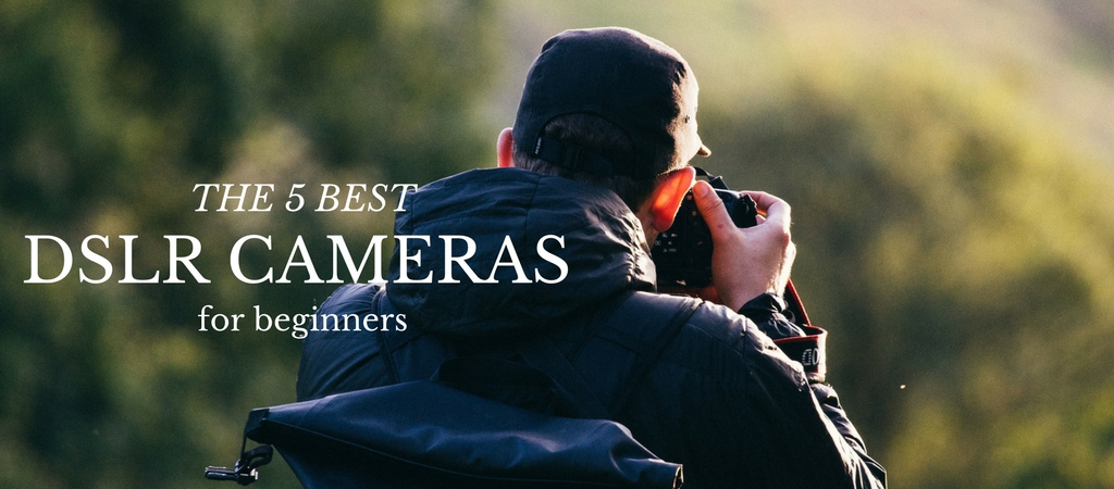 The 5 Best DSLR Cameras For Beginners