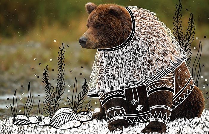 doodles on a bear