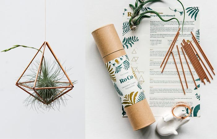 The Copper DIY Air Plant Kit