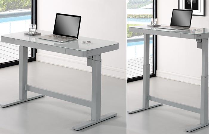 Wildon Home Standing Desk