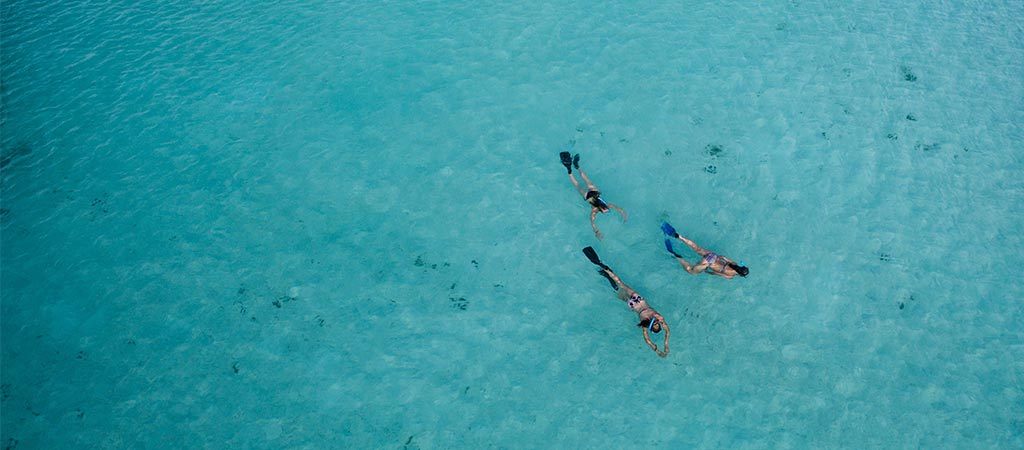Guide to Snorkeling & Spearfishing