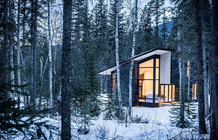 Form and Forest Cabin