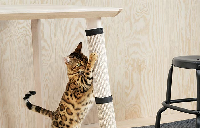 a cat playing with scratching table leg Pet Collection Lurvig