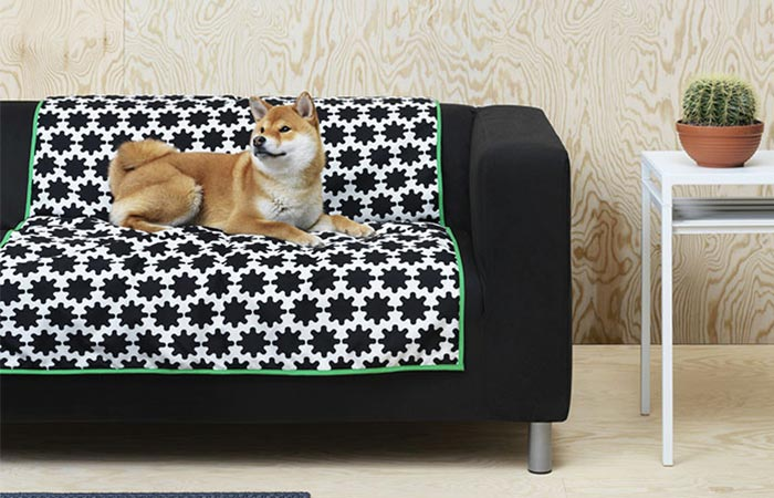 a dog sitting on Ikea pet blanket Pet Collection Lurvig