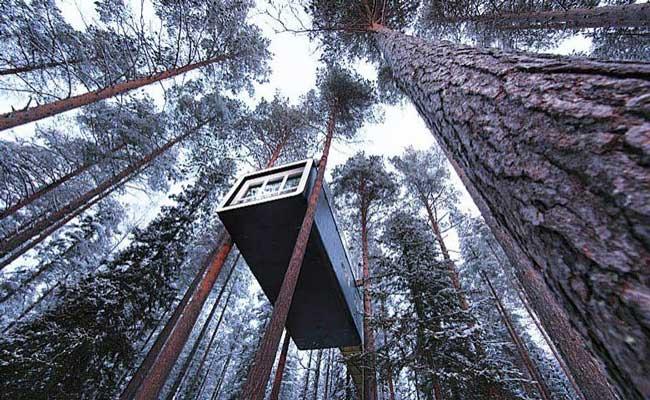 Treehotel Sweden Cabin Exterior