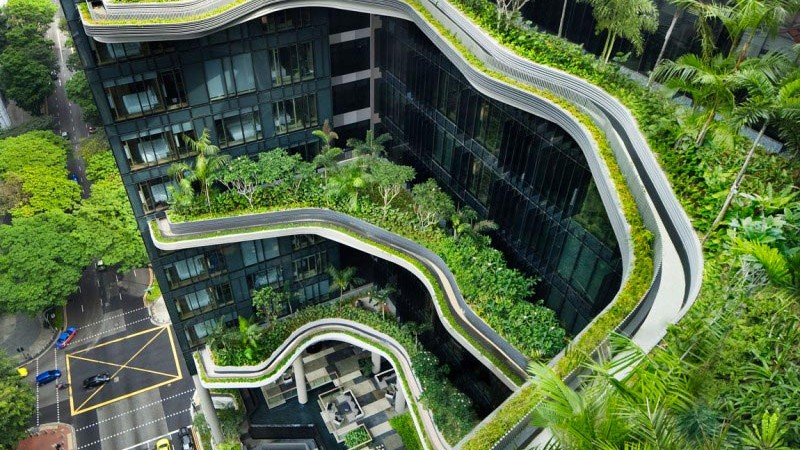 exterior view of the green vegetation at the Parkroyal Singapore