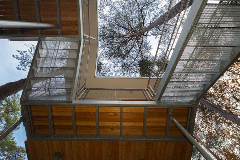 View from the bottom of the treehouse at Baumraum's Treehouse Retreat