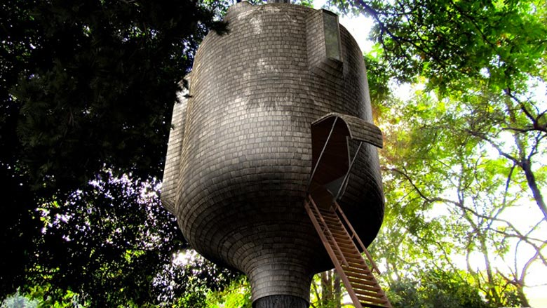 Ladder leading up to the Embryo Treehouse by Antony Gibbon Designs