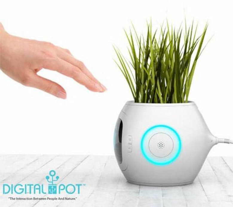 Pet Plant Digital Pot by Junyi Heo
