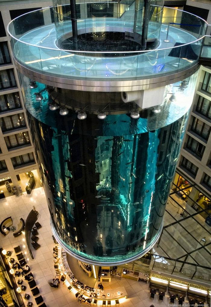 Berlin Hotel Fish Tank