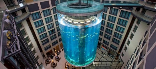 AQUADOM AT THE RADISSON BLU