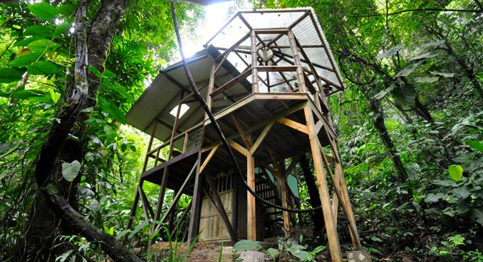 Finca Bellavista Treehouse Community in Costa Rica on Jebiga