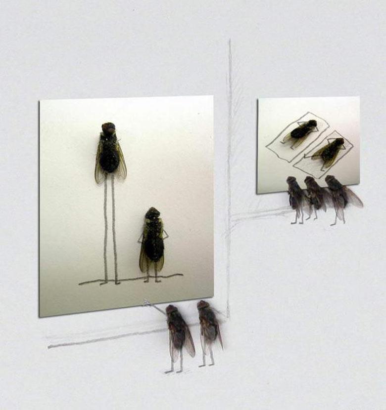 Flychelangelo Dead Flies Art Museum