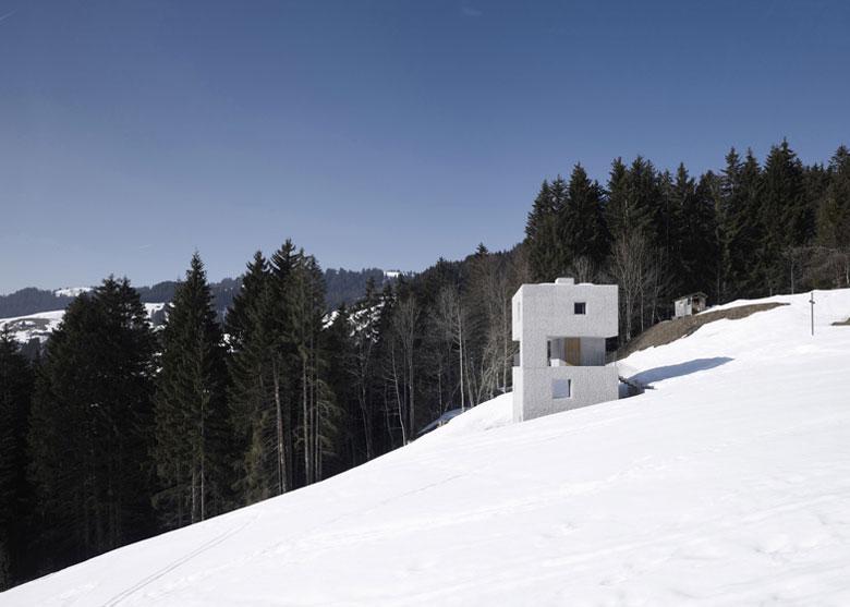 Exterior Architecture of the Mountain Cabin by Marte.Marte in Voralberg Austria