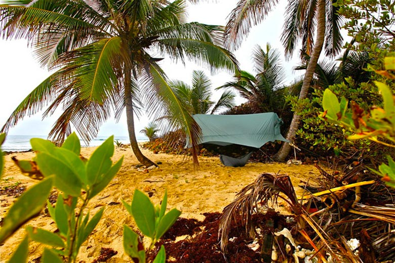 Nube Hammock Shelter by Sierra Madre set on the beach using palm trees