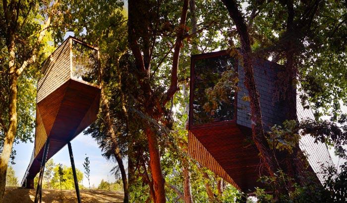 Tree Snake Houses in Pedra Salgadas Portugal
