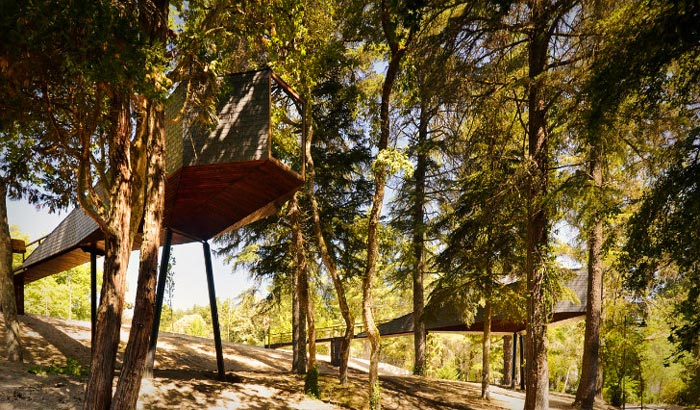 Tree Snake Houses in Pedra Salgadas Portugal