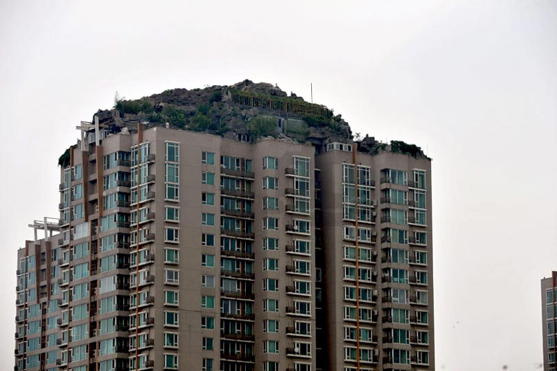 Mountaintop, trees and shrubs on the rooftop of a Beijing High-rise