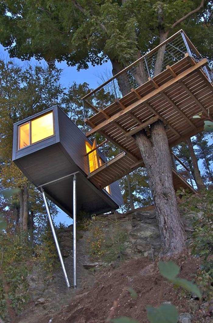 Baumraum Treehouse in New York