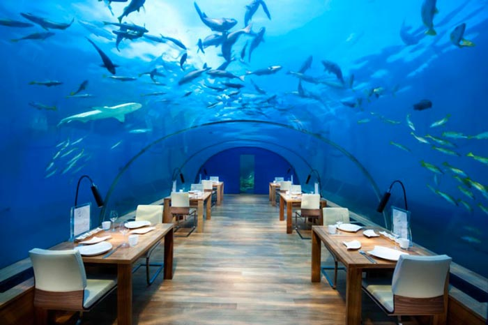 Ihtaa Underwater Restaurant at the Conrad Maldives Rangali Island