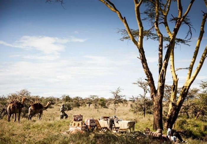 Safari tour at the Segera Retreat in Kenya