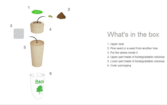 What comes in the box of the Bios Urn A Biodegradable and eco-friendly Urn
