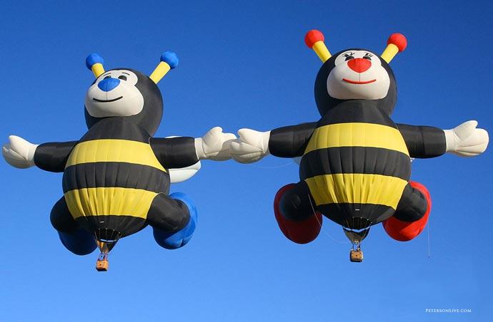 Albuquerque Balloon Fiesta 3