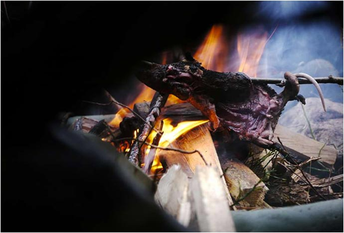 Animal cooking on a camp fire during Bear Grylls Survival Academy