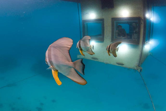Manta Resort Underwater Room in Zanzibar 2