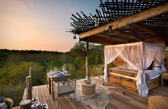 Spectacular view from a treehouse in South Africa