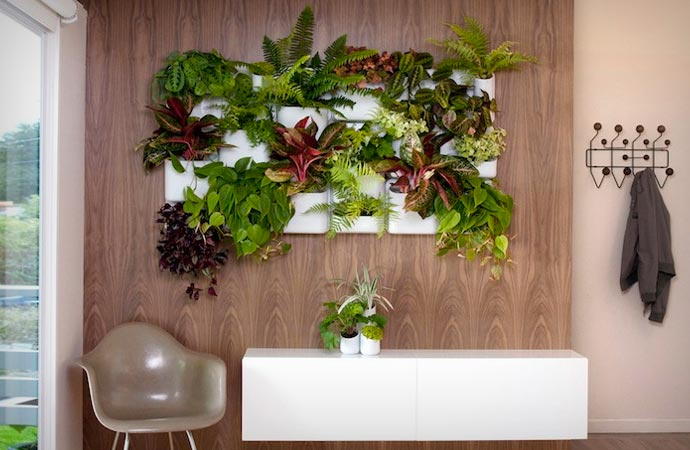 Vertical magnetic garden