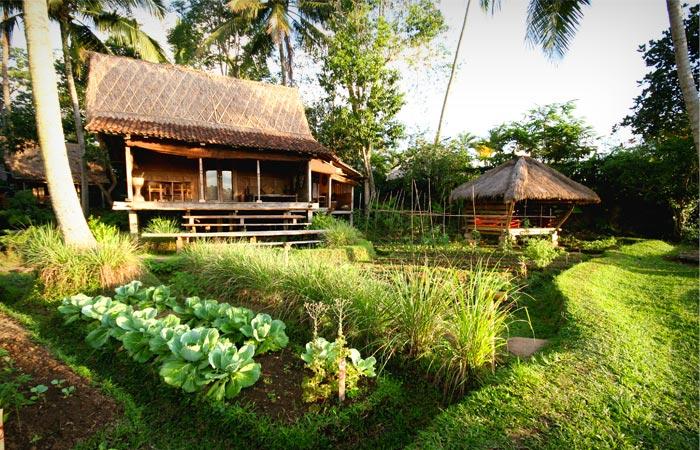 Accomodation at Bambuh Indah