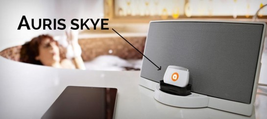AURIS SKYE | WIFI MUSIC RECEIVER FOR YOUR DOCK