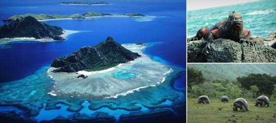 GALAPAGOS ISLANDS (VIDEO)