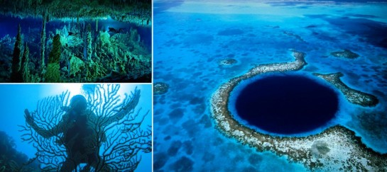 GREAT BLUE HOLE | BELIZE