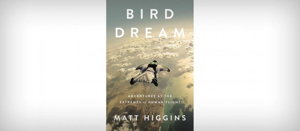 Bird Dream by Matt Higgins