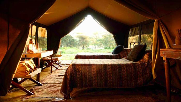 Room at Nomad Safari