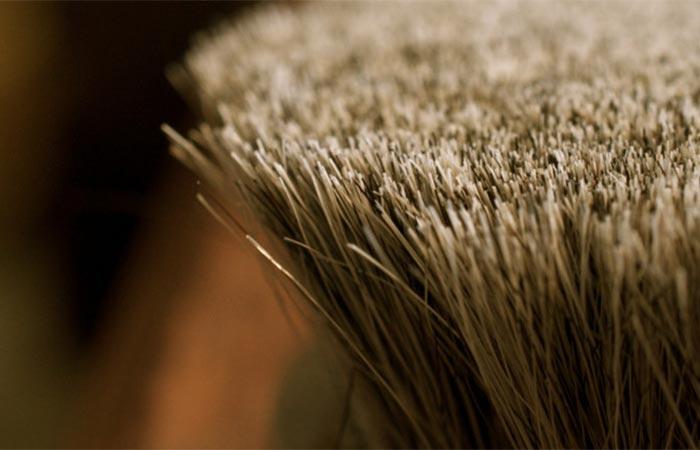 Horse hair bristles