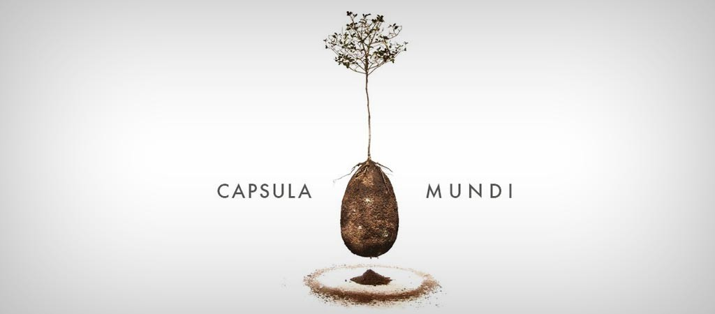 Capsula Mundi burial pod