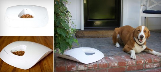 FEED AND GO | AUTOMATIC PET FEEDER