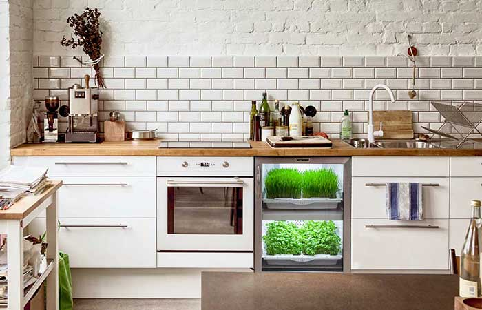 Urban Cultivator in a kitchen
