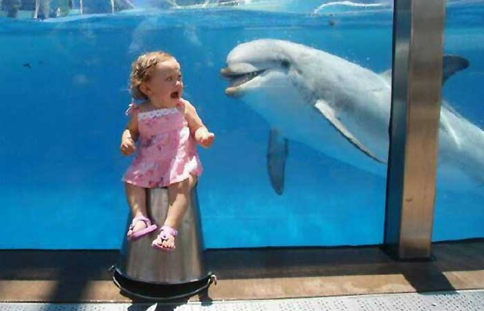 Girl scared of a dolphin