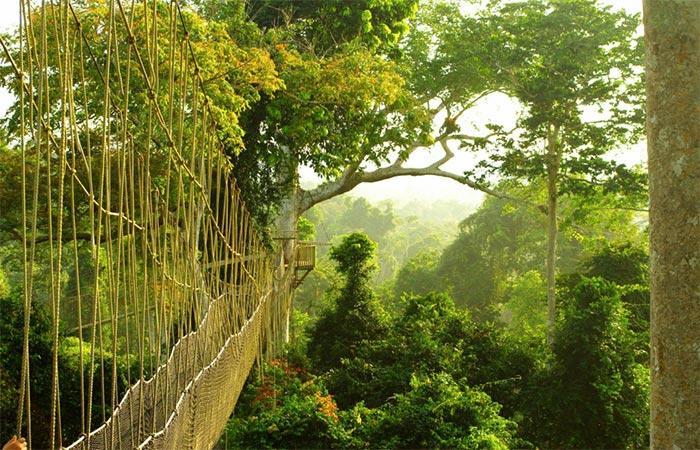 Ghana's national park