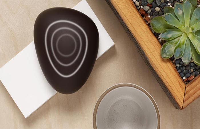Dojo Smart Home Network Security System Places On a Wooden Surface Next To A Plant