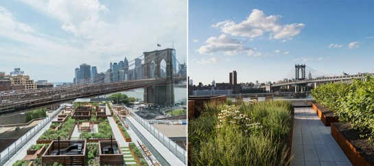 60 Water | Brooklyn Apartment Building With Stunning Rooftop Garden