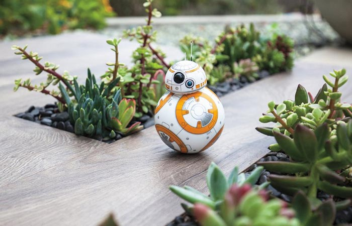 BB-8 exploring the outdoors.