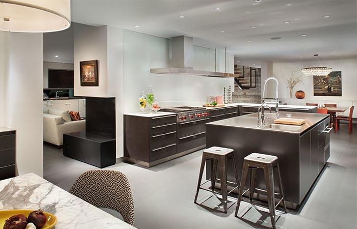Black Birch Modern interior, kitchen
