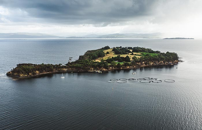 Satellite Island from afar.